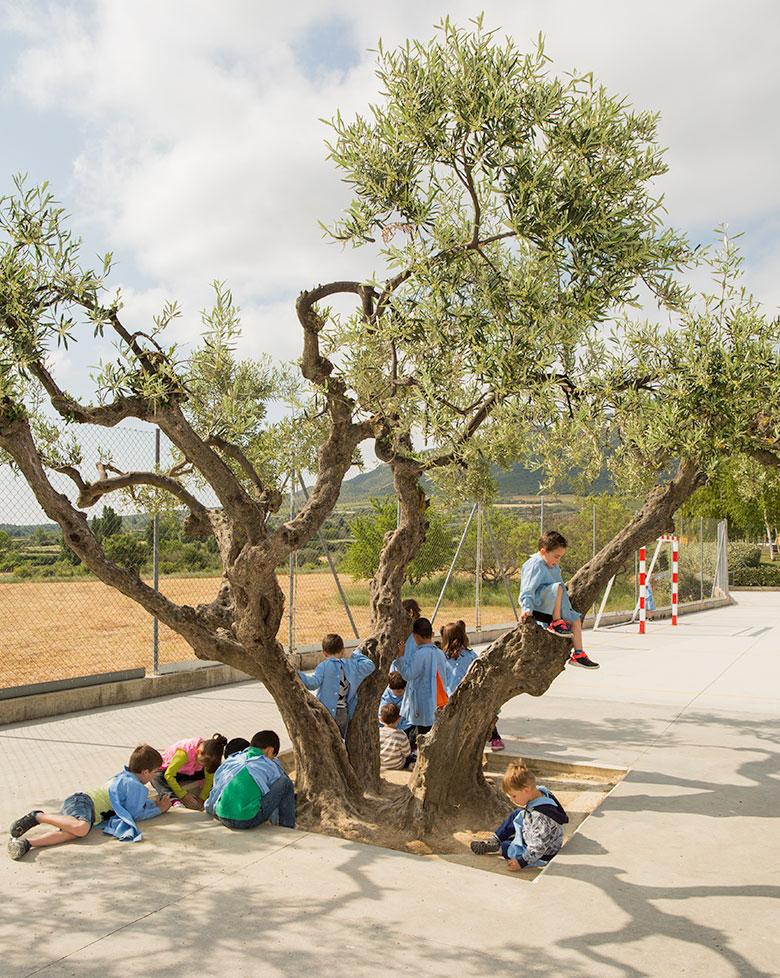 Nuestro proyecto colegio Mater Dei, Estella