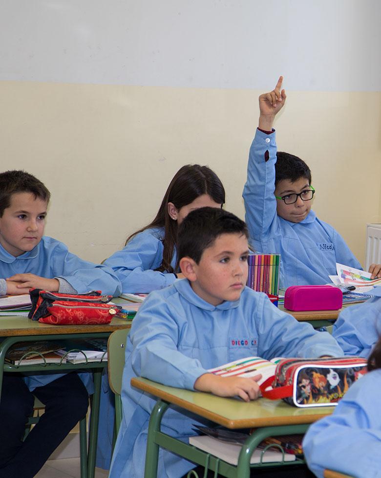 Proyecto educativo de 6 a 12 años. Colegio Mater Dei, Ayegui - Estella